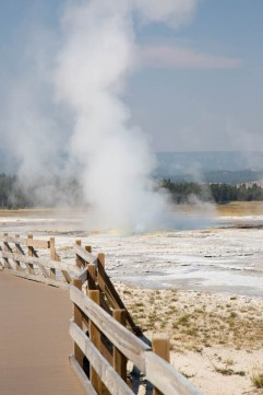 Clepsydra Geyser, Yellowstone National Park